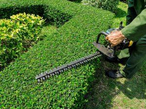 Landscape Maintenance Greenburg NY - Green Gold Landscaping