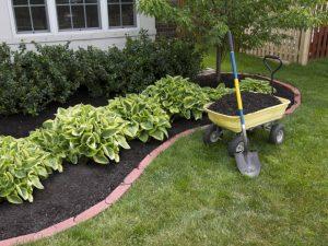 Landscape Maintenance Ardsley NY - Green Gold Landscaping