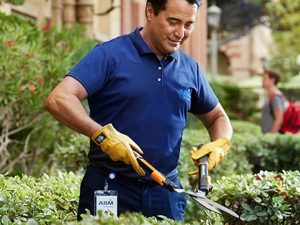 Landscaping in Hawthorne NY - Green Gold Landscaping
