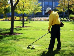 Landscaping Services Greenwich CT - Green Gold Landscaping