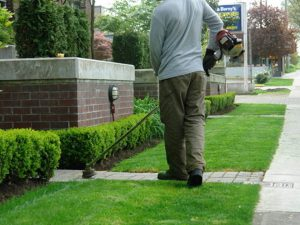 Landscaping White Plains NY - Green Gold Landscaping