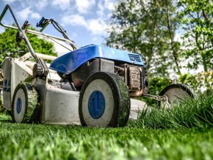 Lawn Maintenance Greenburg NY - Green Gold Landscaping