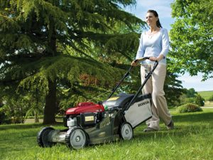 Lawn Maintenance Harrison NY - Green Gold Landscaping