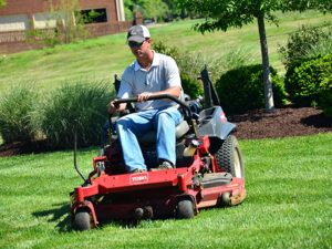 Lawn Care Services Scarsdale NY - Green Gold Landscaping