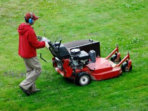 Lawn Care Rye NY - Green Gold Landscaping