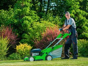 Lawn Maintenance White Plains NY - Green Gold Landscaping