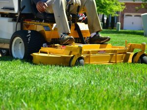 Lawn Care Westchester NY - Green Gold Landscaping