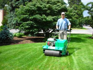 Westchester Lawn Service - Green Gold Landscaping