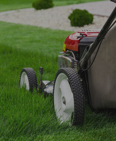 Lawn Maintenance Westchester NY | Lawn Care Services White Plains on