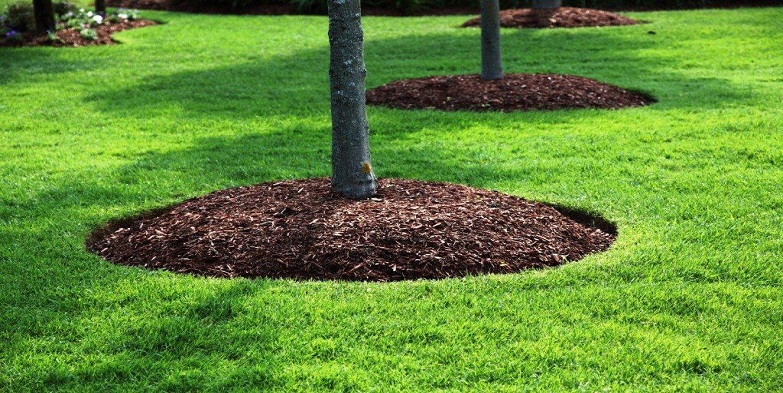 What Is Mulching How To Mulch Your Garden Green Gold Landscaping