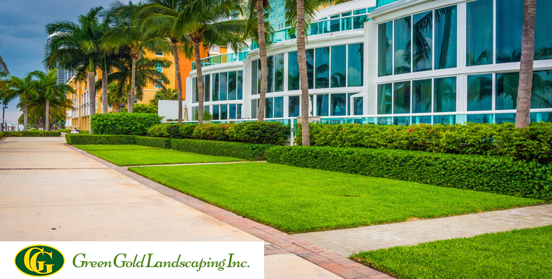 So, there is a need for quality landscaping services. But, with many  Commercial ... - Commercial Landscape Services Tips Archives - Green Gold Landscaping Inc
