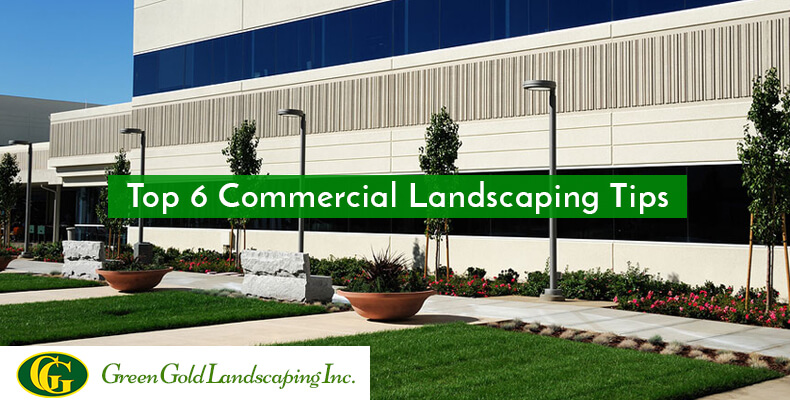 6 Commercial Landscaping Tips To Draw Your Customer S Attention