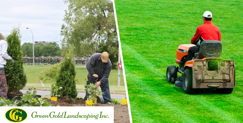 Superb As The Name Itself Suggests, Lawn Care Is Just Taking Care Of An Already  Established Garden. Lawn Care Involves Some Routine Seasonal Tasks Like  Trimming ...