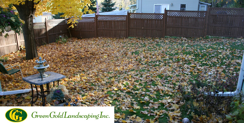 How To Do A Complete Backyard Cleanup Green Gold Landscaping Inc