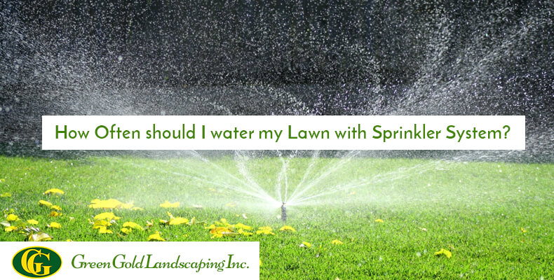 How Often Should I Water My Lawn With Sprinkler System Green