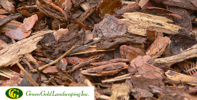 Pine Bark Mulch And What Are Its Benefits