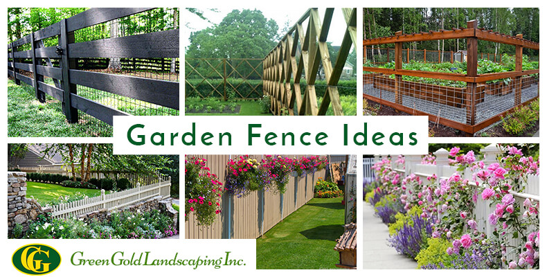 10 Beautiful and Cheap Garden Fence Ideas for Privacy - Green Gold ...